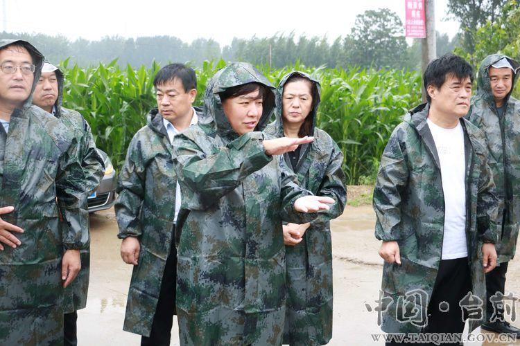 县委副书记、代县长李志华组织调研农田防涝除涝工作